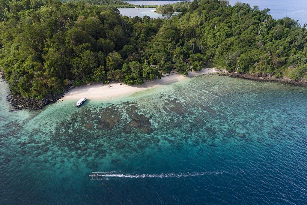 01 murex bangka dive resort sulawesi indonesien tauchreisen