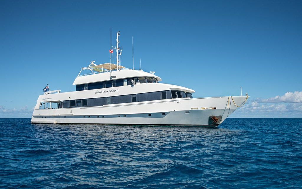 Turks & Caicos Explorer II – Silver Bank Schnorcheltouren