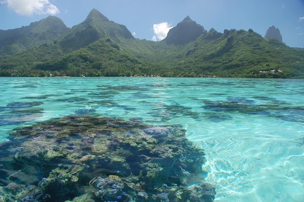 02 index moorea franzoesisch polynesien tekura tahiti travel
