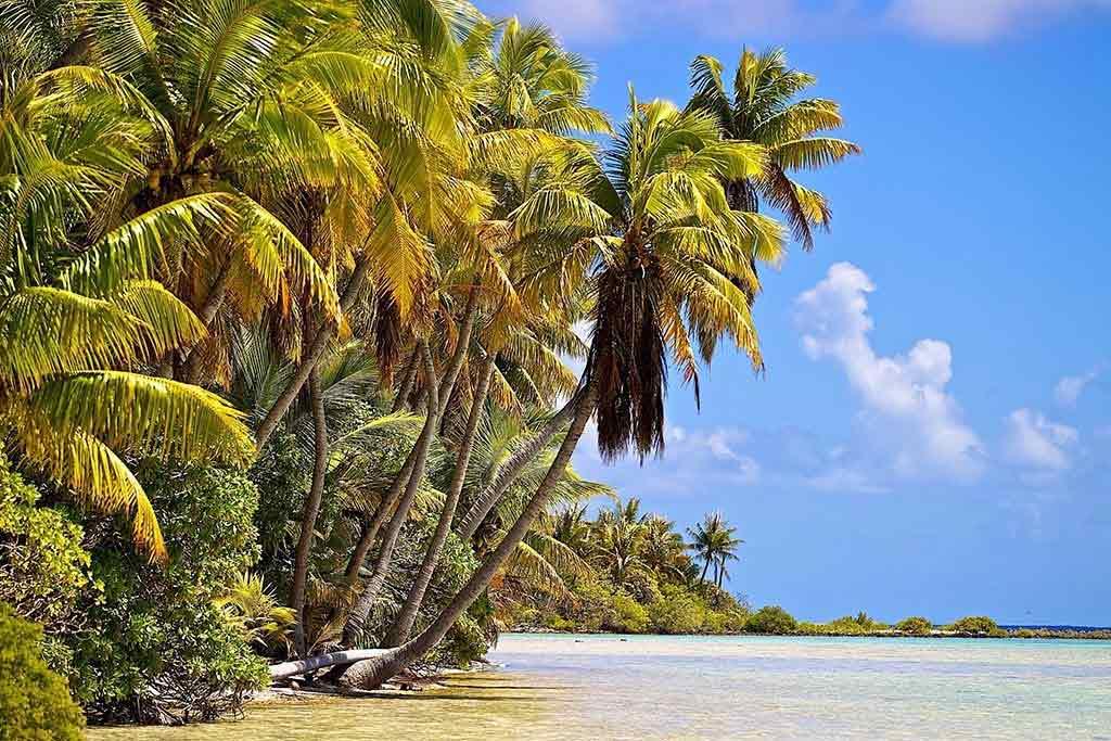 02 index rangiroa franzoesisch polynesien copyright kia ora