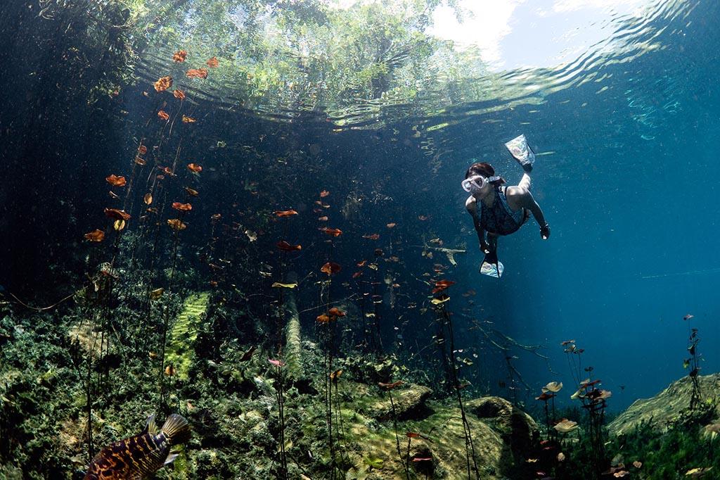 02 maya blue dive center riviera maya hoehlentauchen mexiko tauchreisen©TomStGeorge