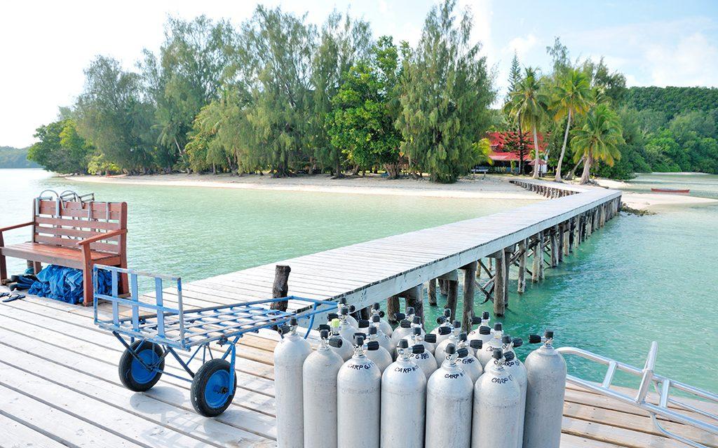https://as-tauchreisen.de/wp-content/uploads/02-palau-diving-center-carp-island-resort-1-1024x640.jpg