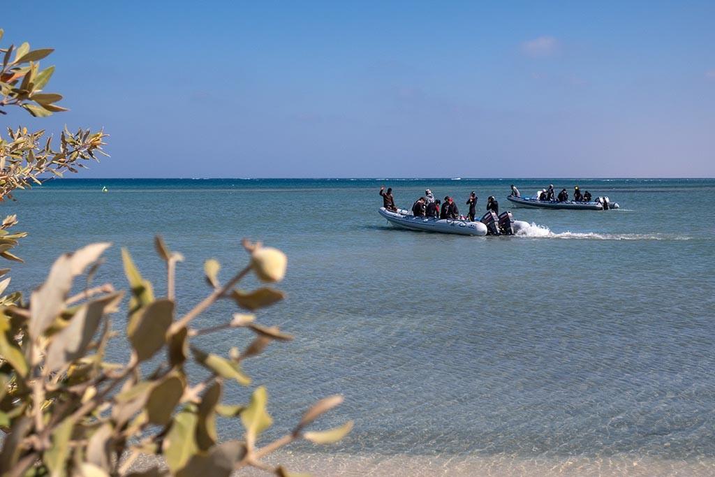 02 red sea diving safari wadi lahami berenice aegypten