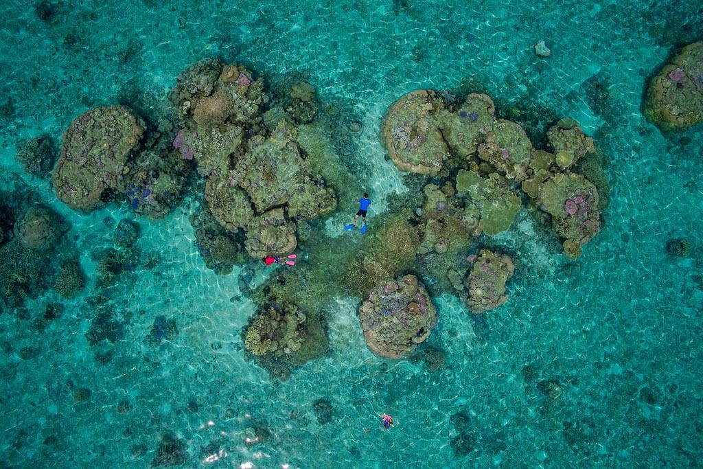04 Tauchreisen Tonga Sandy Beach Resort Matafonua Lodge