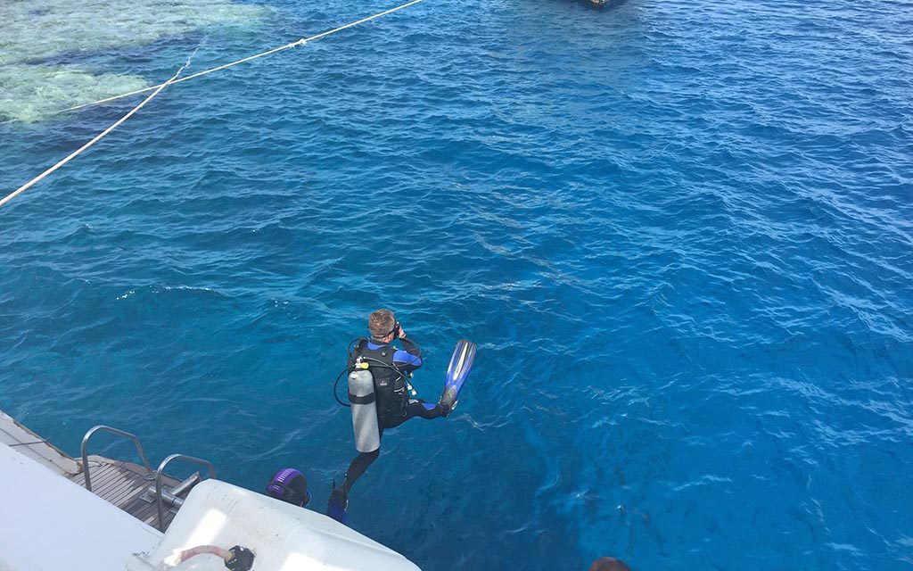 https://as-tauchreisen.de/wp-content/uploads/05-werner-lau-diving-center-the-oasis-dive-resort-marsa-alam-1024x640.jpg