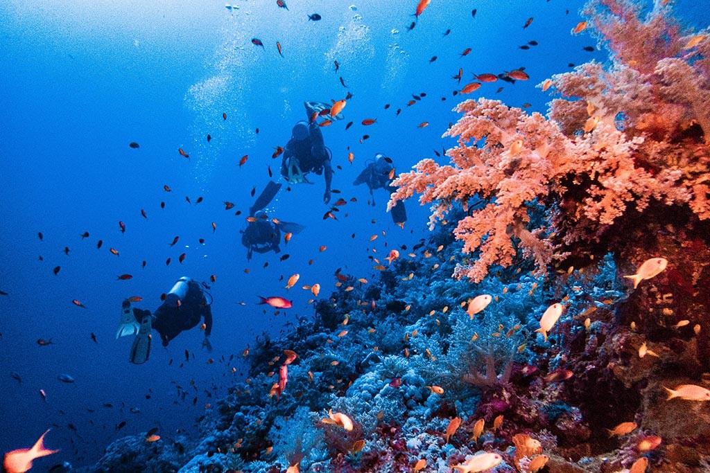 06 blue ocean dive center abu dabbab aegypten tauchbasis 1