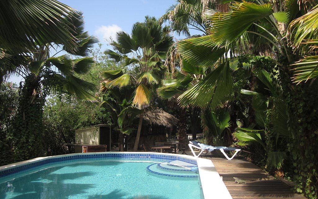 https://as-tauchreisen.de/wp-content/uploads/09-tropical-inn-bonaire-tauchreisen-1024x640.jpg