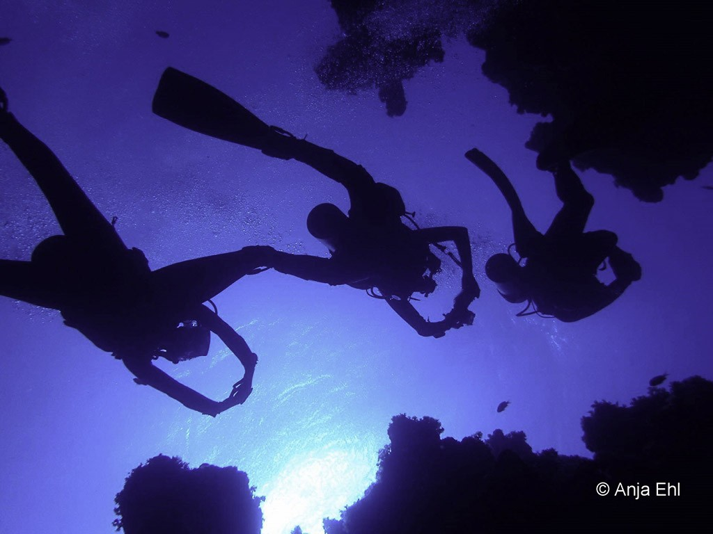 11 blue ocean dive dahab tauchbasis sinai aegypten 1