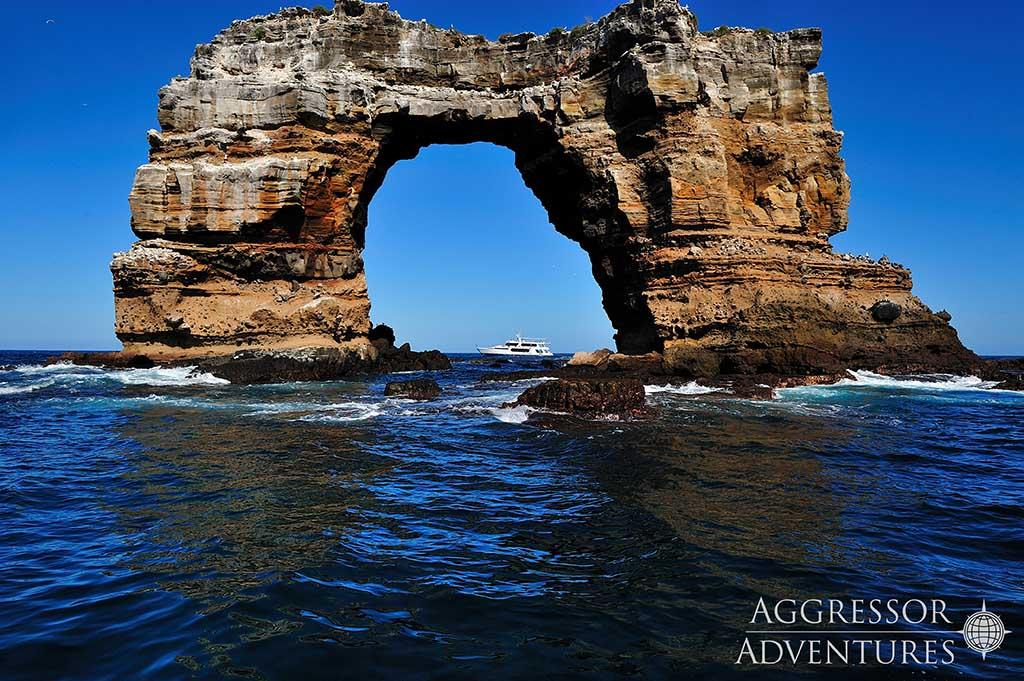 Galapagos Aggressor 09