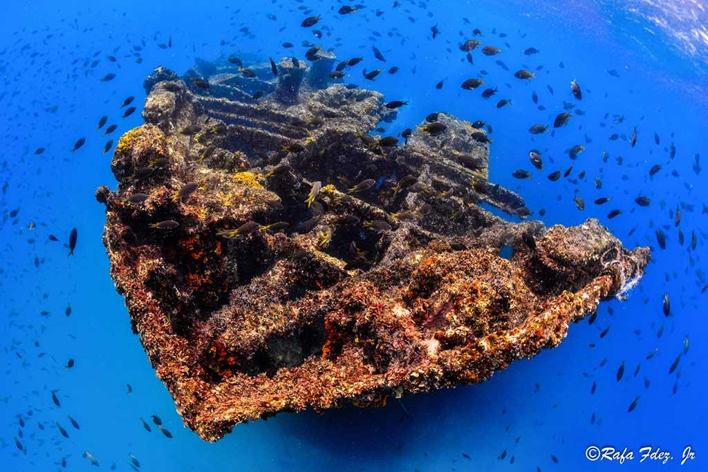 Haliotis Dive Center12