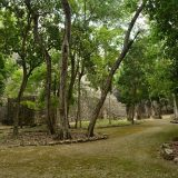 calakmul reisebaustein yucatan dive trek mexiko 03 Judith Hoppe